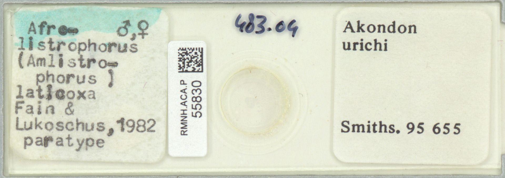 RMNH.ACA.P.55830 | Afrolistrophorus (Amlistrophorus) laticoxa Fain & Lukoschus 1982