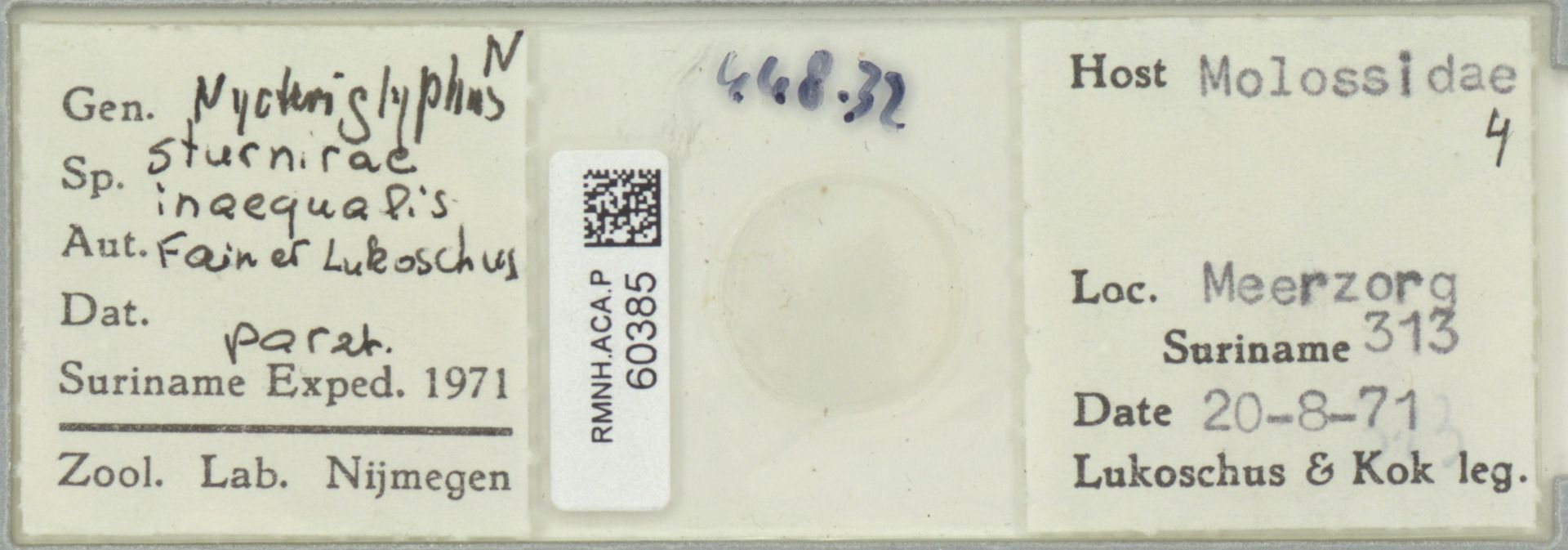 RMNH.ACA.P.60385 | Nycteriglyphus sturnirae inaequalis Fain et Lukoschus
