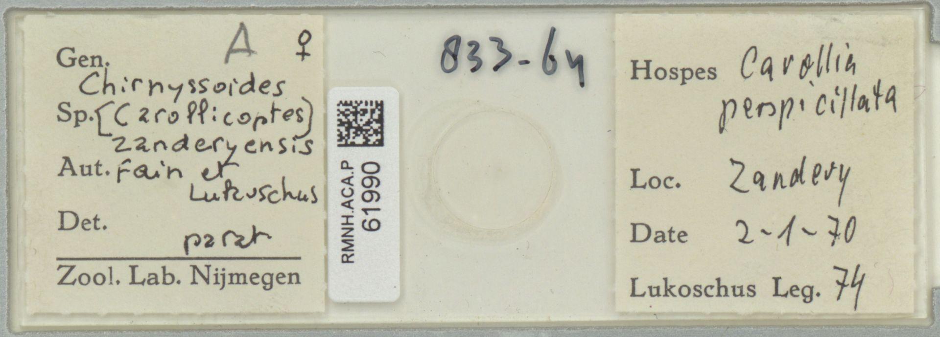 RMNH.ACA.P.61990 | Chirnyssoides (Carollicoptes) zanderyensis Fain & Lukoschus