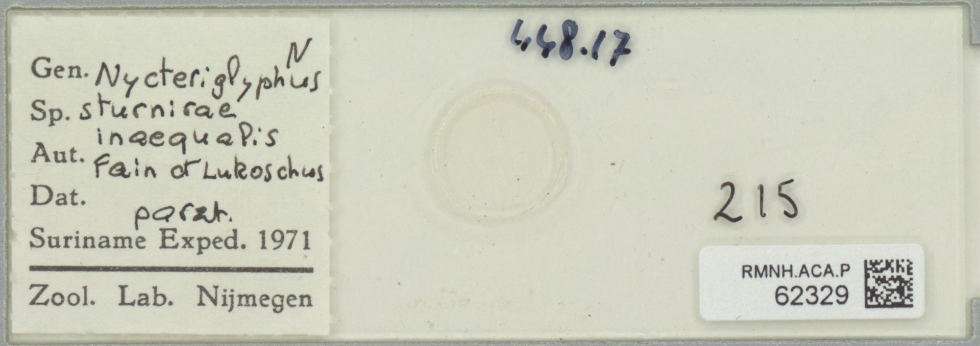 RMNH.ACA.P.62329 | Nycteriglyphus sturnirae inaequalis Fain et Lukoschus