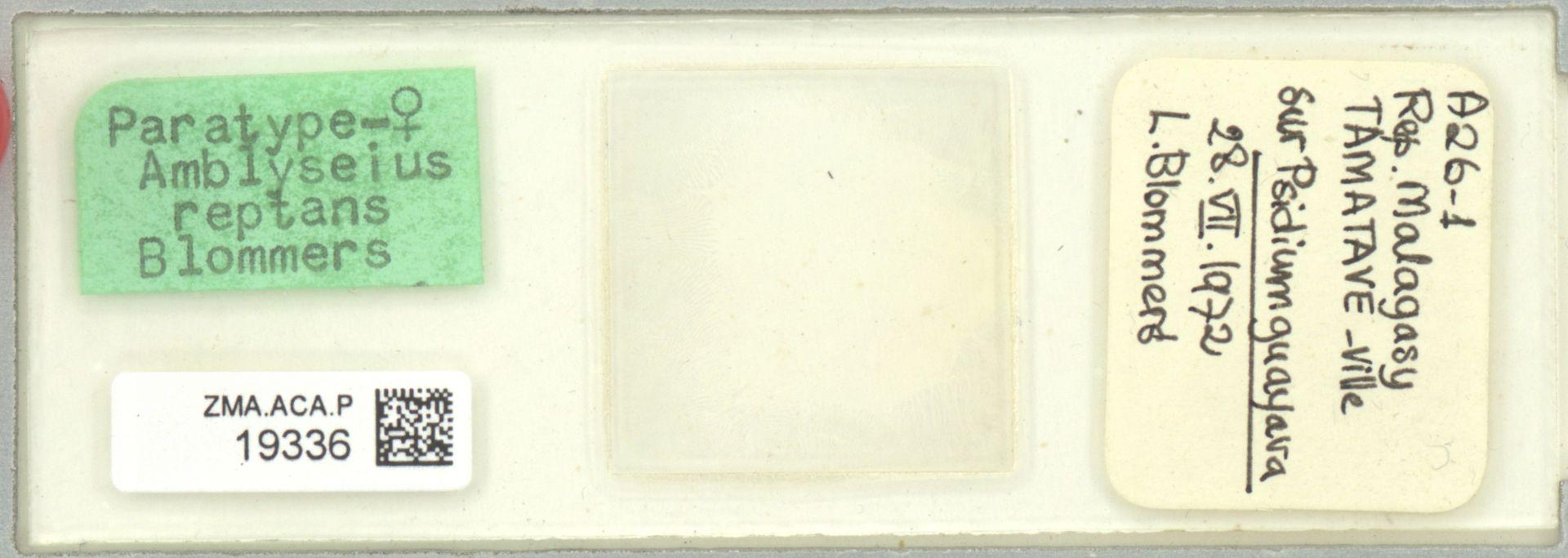 ZMA.ACA.P.19336 | Amblyseius reptans Blommers, 1974