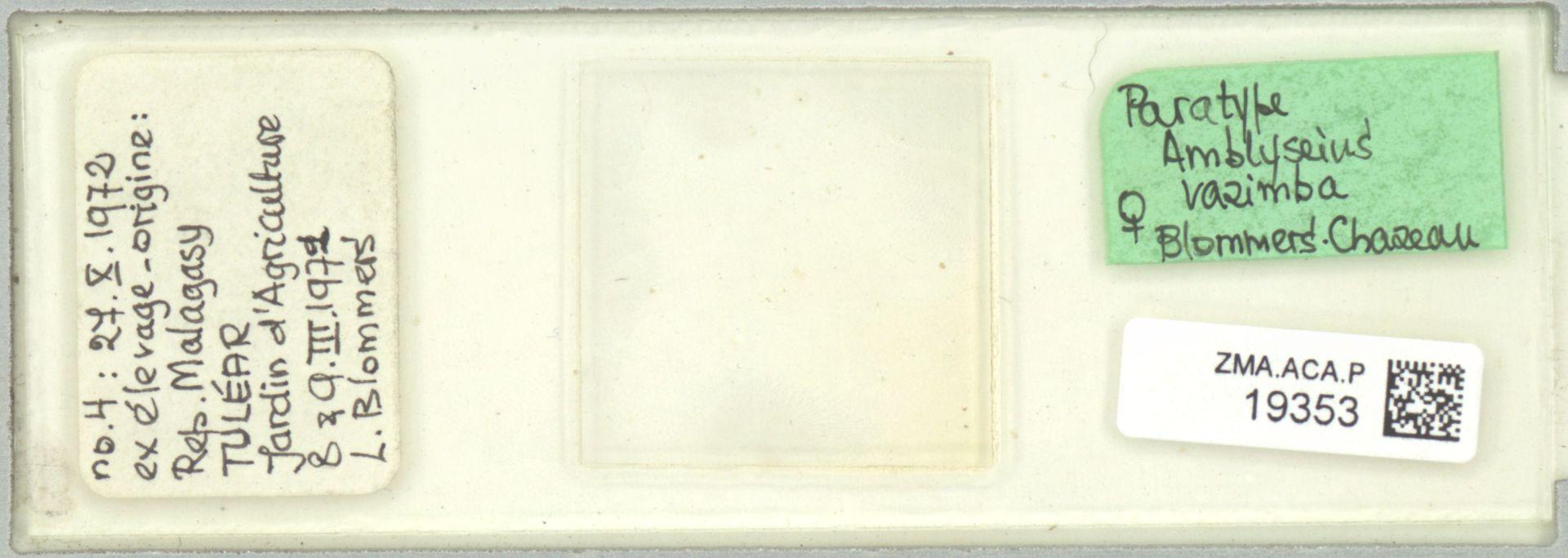 ZMA.ACA.P.19353 | Amblyseius razimba Blommers & Chazeau