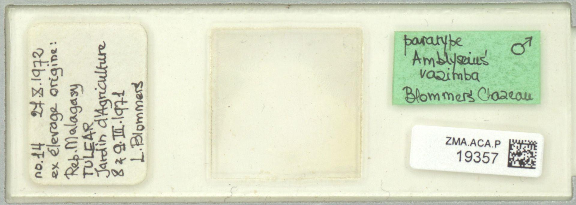 ZMA.ACA.P.19357 | Amblyseius razimba Blommers & Chazeau