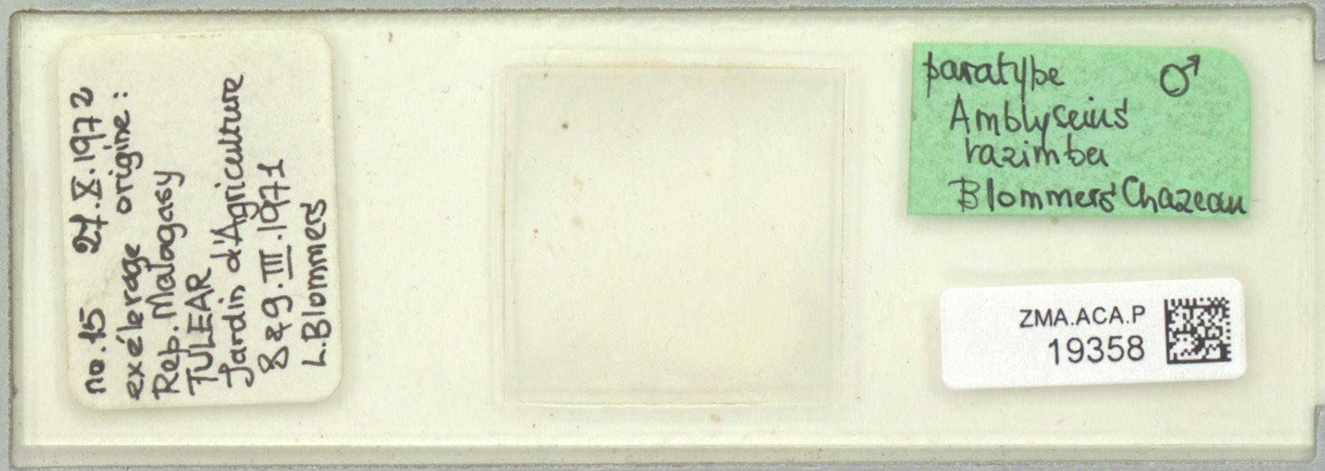 ZMA.ACA.P.19358   Amblyseius razimba Blommers & Chazeau