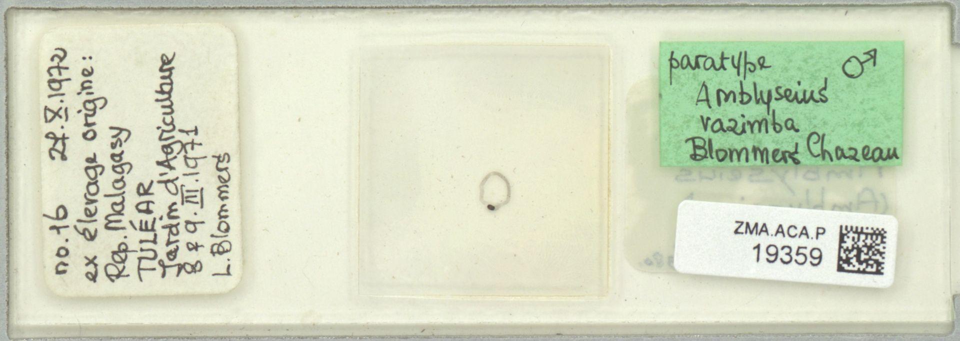 ZMA.ACA.P.19359 | Amblyseius razimba Blommers & Chazeau