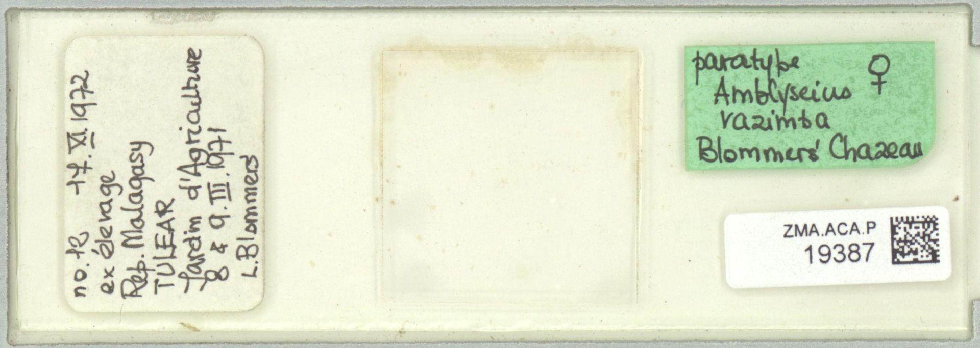 ZMA.ACA.P.19387 | Amblyseius razimba Blommers & Chazeau