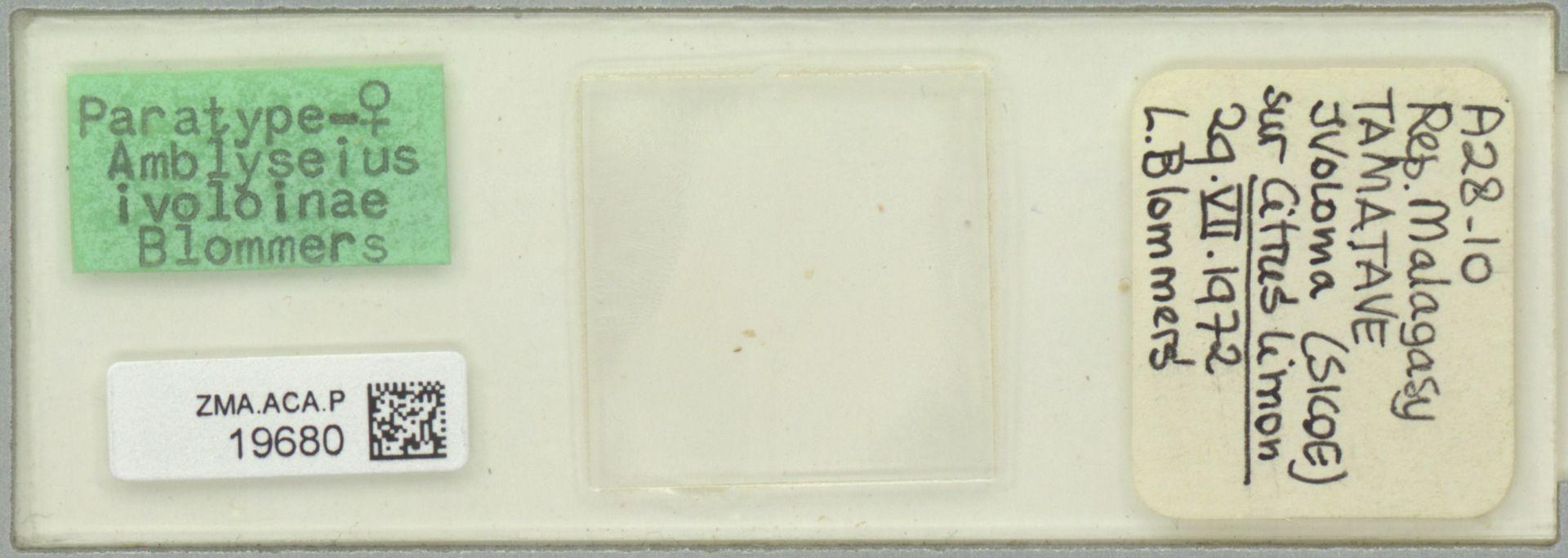 ZMA.ACA.P.19680 | Amblyseius ivoloinae Blommers